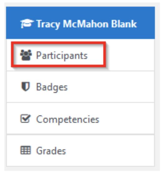 Moodle Participants screenshot